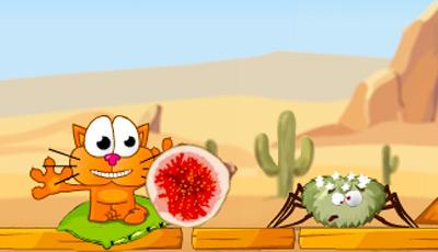 Hungrige Katze 4
